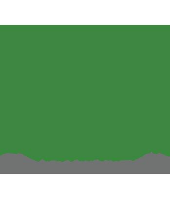 Life Chiropractic
